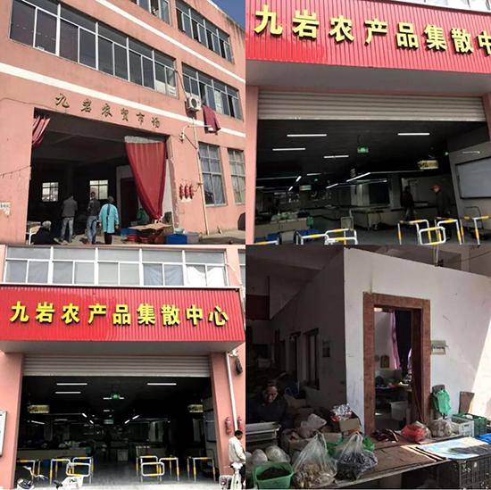 绍兴钱清镇农贸市场改造设计—一鸿市场研究中心