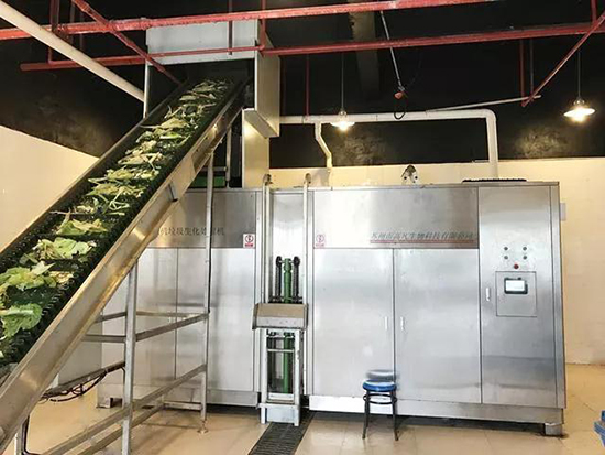 新民桥农贸市场设计—一鸿市场研究中心